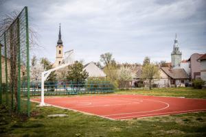 Спортски савез општине Апатин организује турнир у баскету, пријаве до четвртка